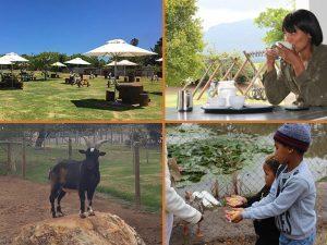 George Wildlife Park Now Open